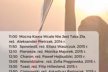 piknik _filmowy